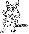 Cat 18